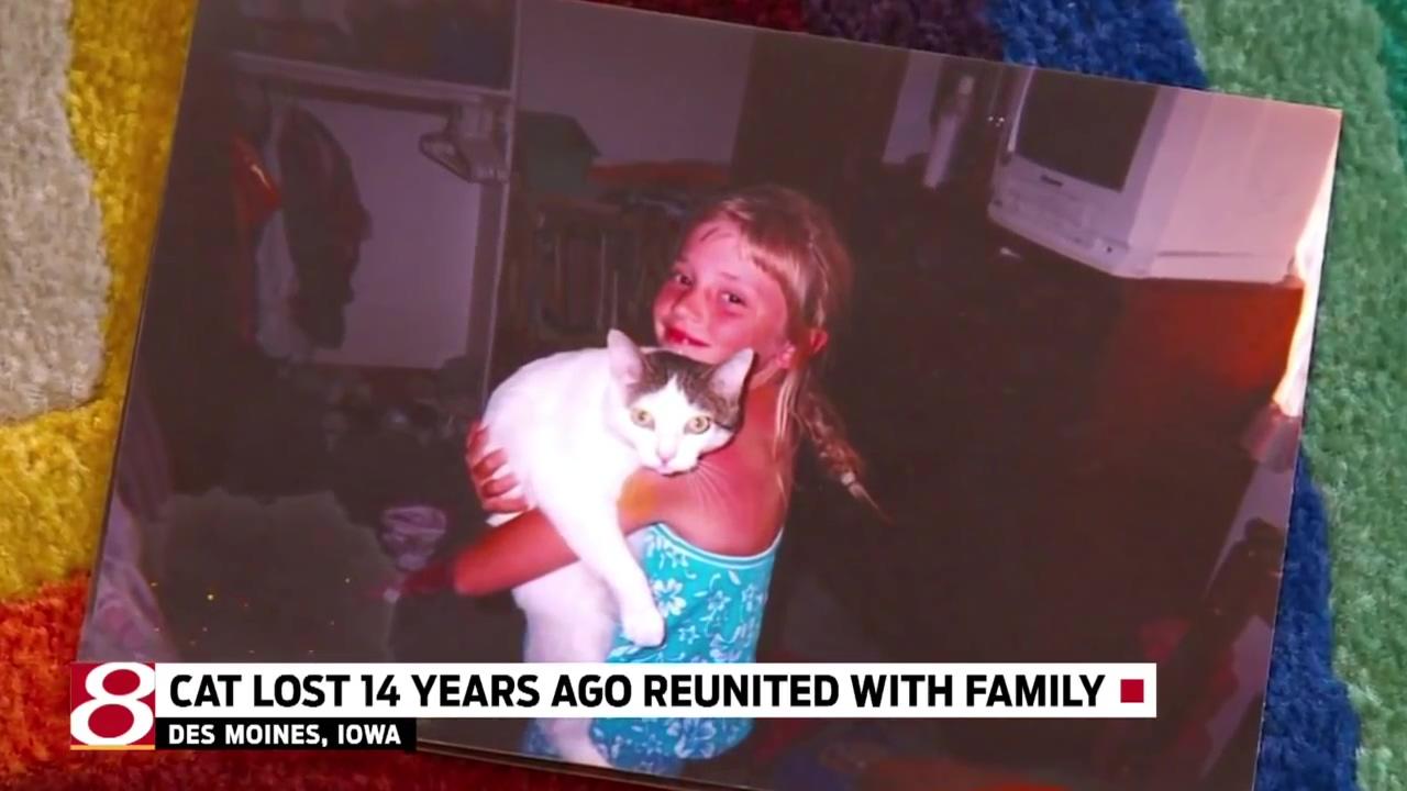 14년 전 잃어버린 고양이가 어느 날 돌아왔다!