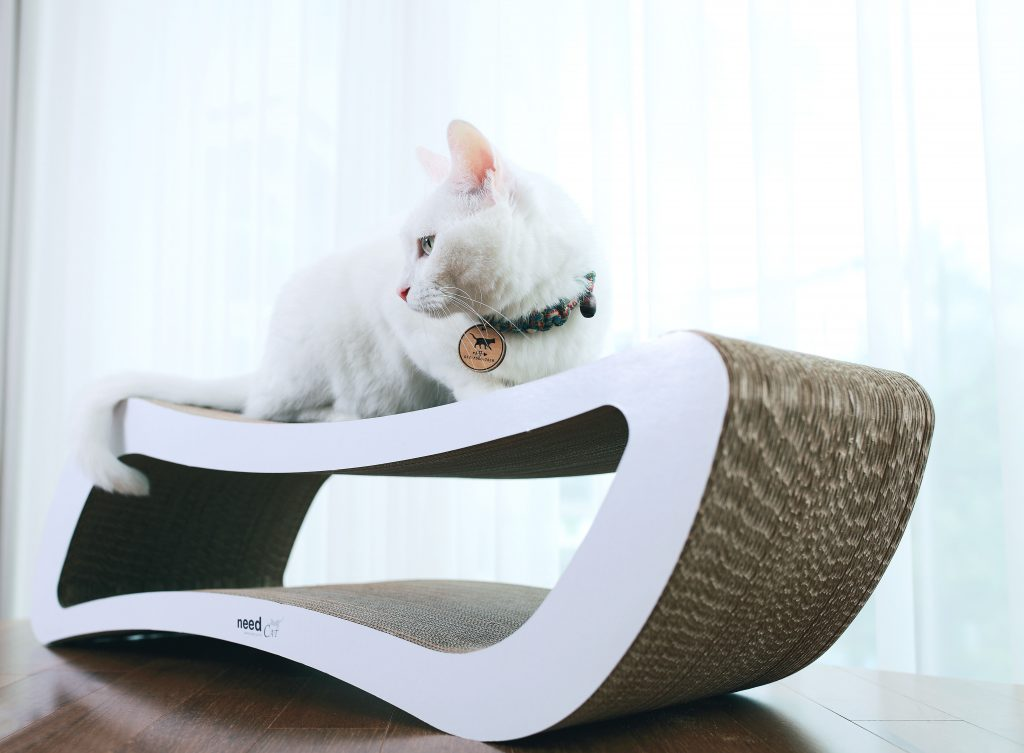 Need CAT-09