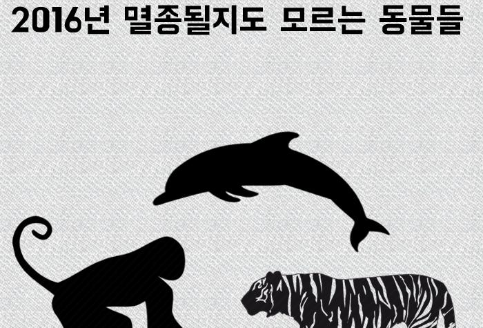 (카드뉴스) 2016년 멸종될지도 모르는 동물들