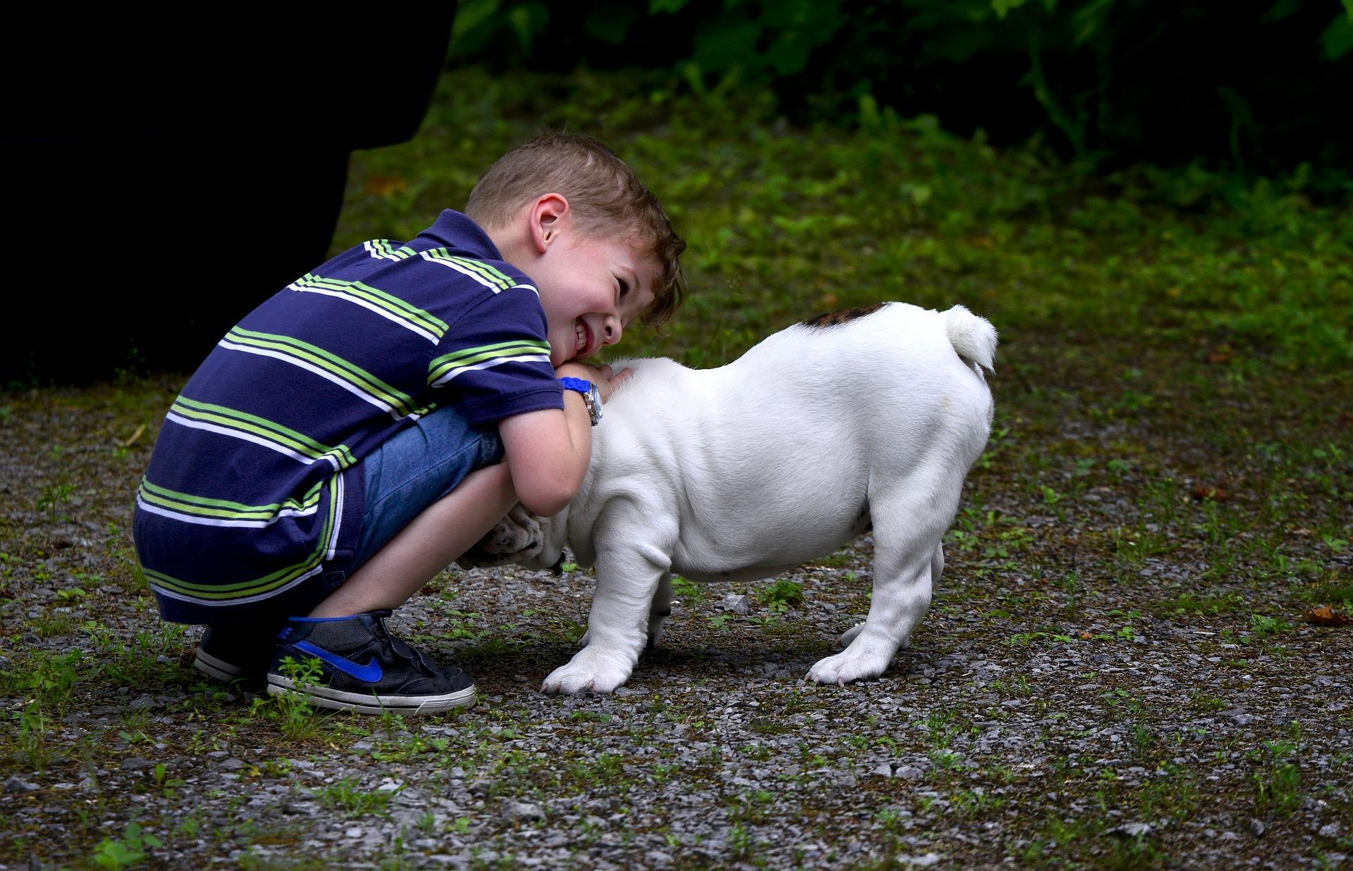 (연구결과) 아이들, 형제보다 반려동물과의 관계 더 소중해