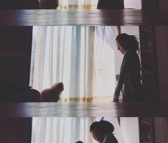 이효리, 고양이 앞에서 애교발산 춤