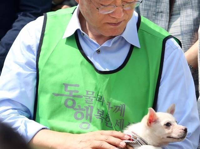 문재인, 반려동물 5대 핵심 공약 발표