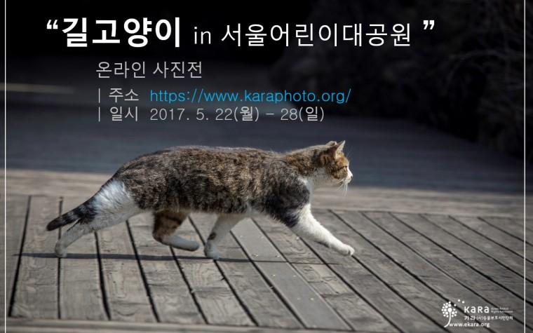 카라, 서울어린이대공원 길고양이 사진전 열어