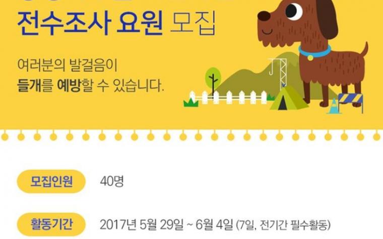 서울시 카라와 함께 '들개' 예방을 위한 협력사업 시작