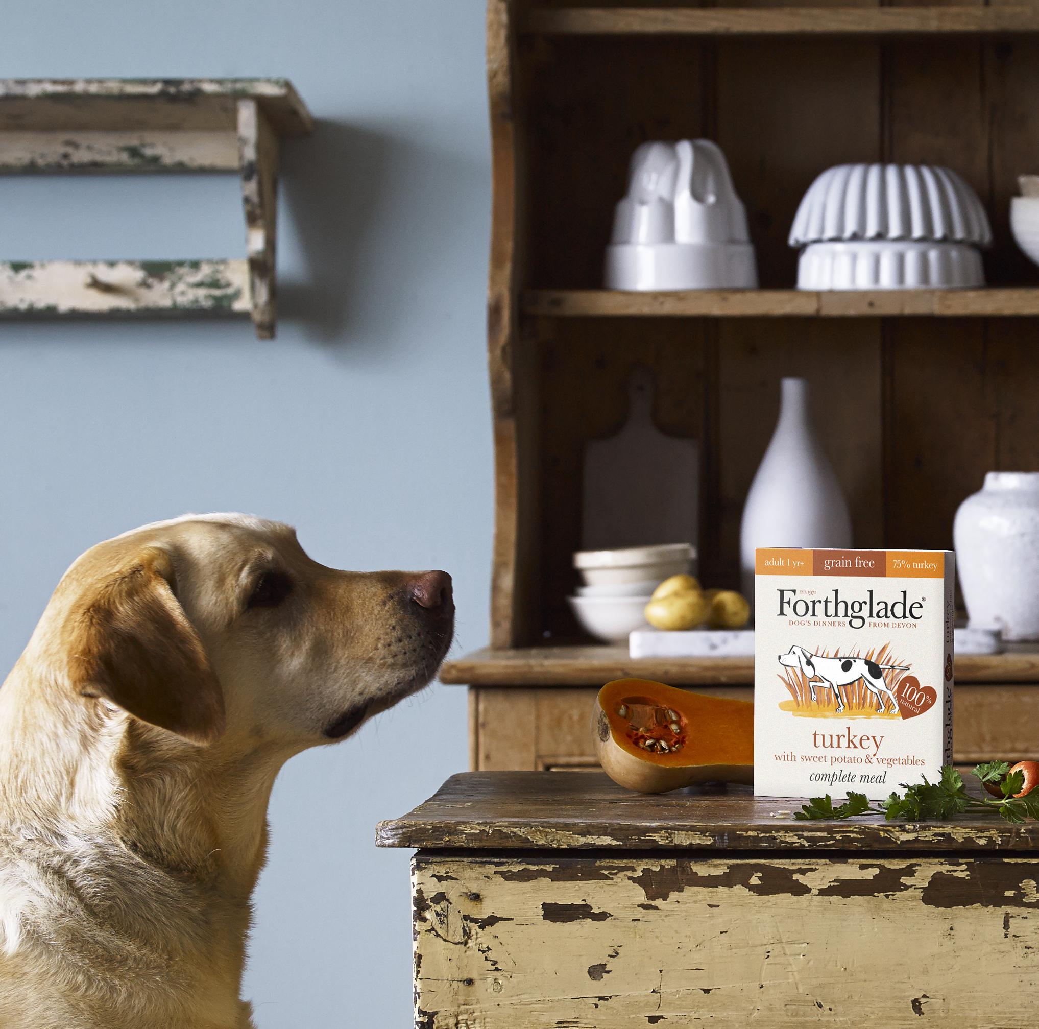 Ivermectin for dogs veterinary