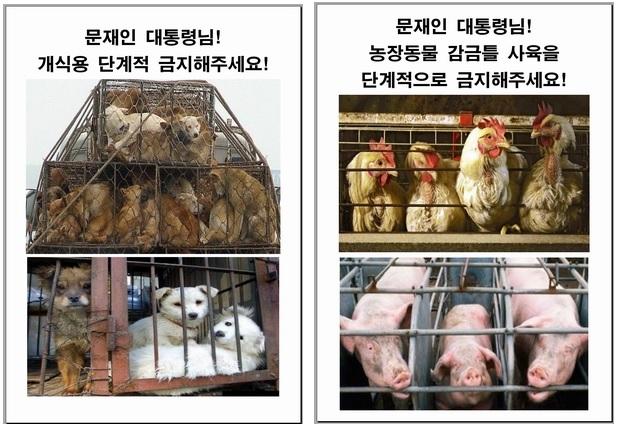 전국동물보호활동가, 국민인수위에 동물보호 정책 요구 기자회견