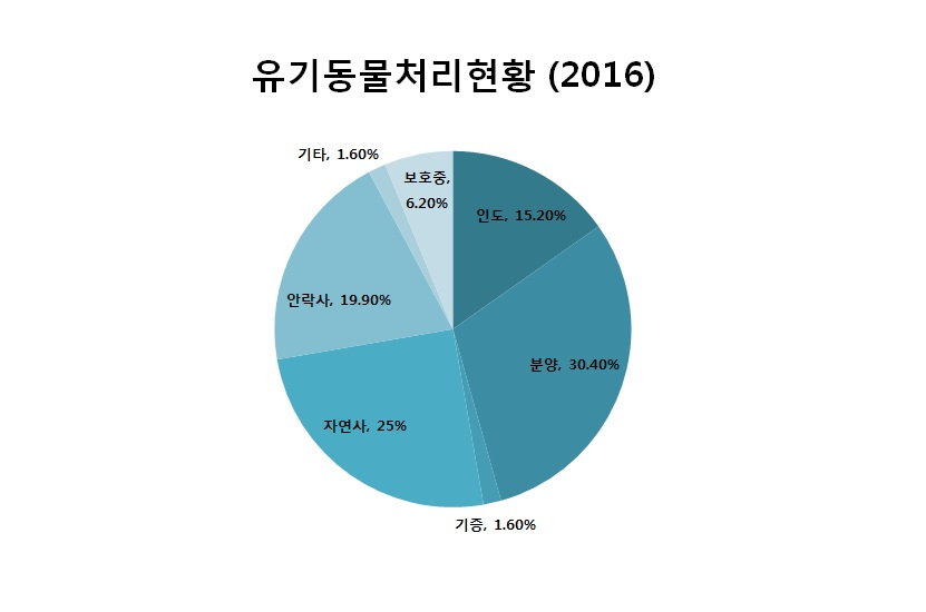 사진='2016년 유기동물 처리현황'(케어 제공)