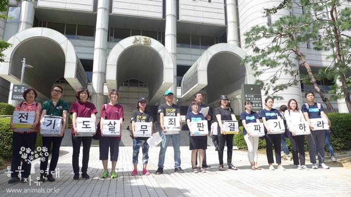 """전기꼬챙이로 개 도살 1심 무죄 판결…檢 """"법리 오해 있다"""""""