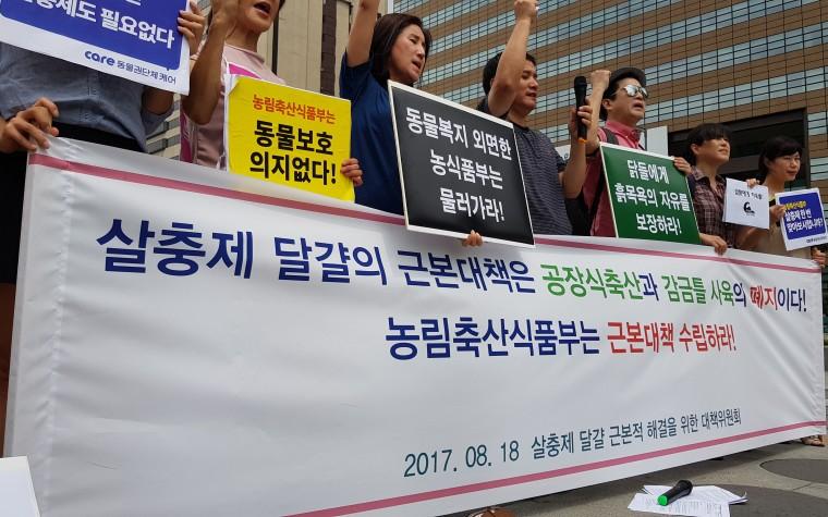 """""""공장식 축산, 감금틀 사육 폐지해야"""""""