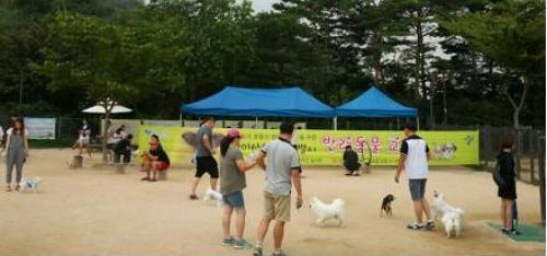 서울시, 9월 매주 일요일 반려동물 교실 운영