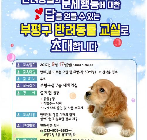 인천시 부평구, 17일 '반려동물 교실' 개최