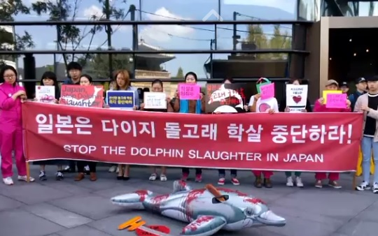 """""""일본은 잔인한 돌고래 학살을 즉각 중단하라!"""""""