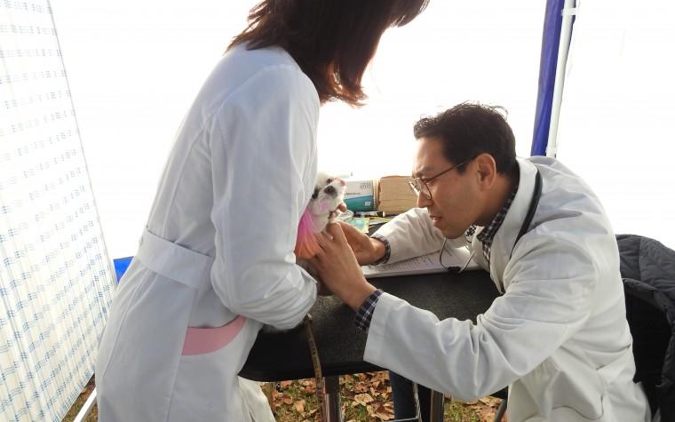 서울시보건환경연구원, '찾아가는 반려동물 이동검진 센터' 운영
