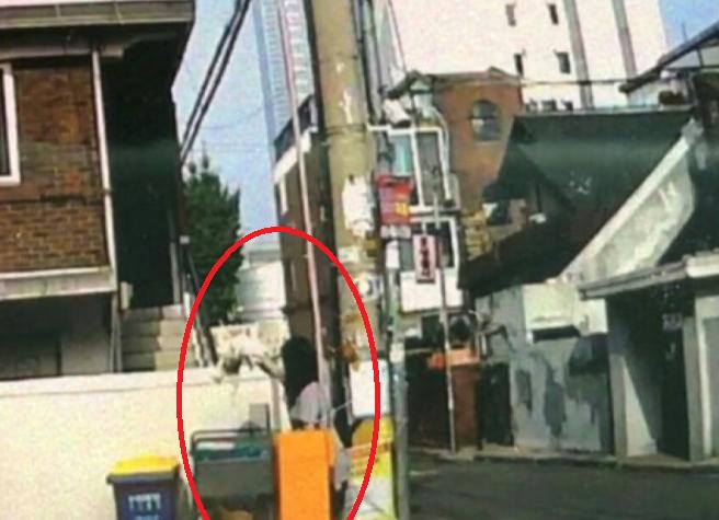 강아지를 분리수거함에 버린 견주…네티즌 맹비난