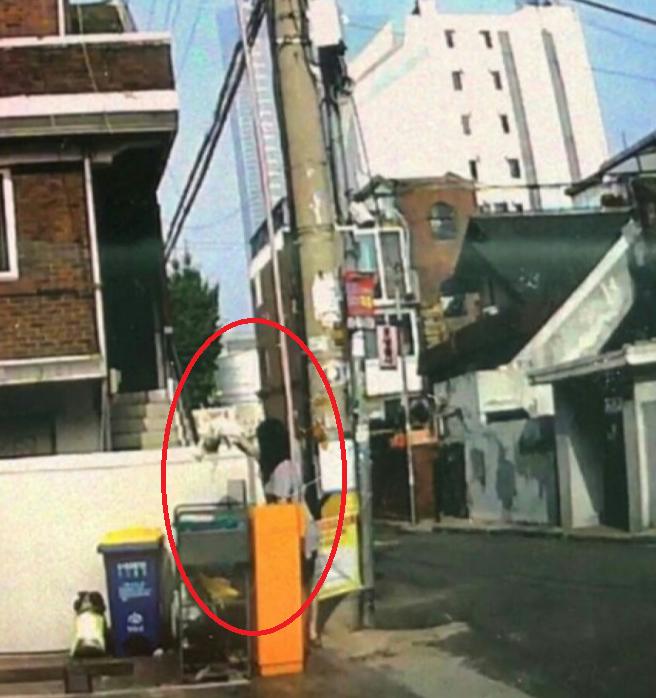 사진=SNS 캡쳐(이하)