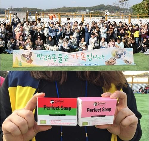 울지마마이펫, 바자회 통해 유기견 보호소 운영비 후원