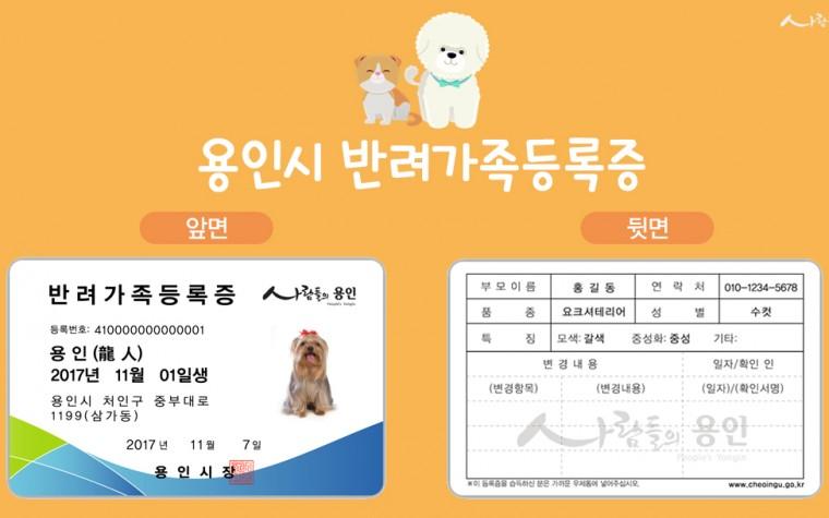 용인시, 내달 1일부터 '반려가족등록증' 발급