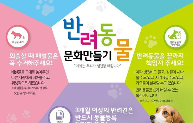 부산시, 반려동물 안전대책 마련위한 '동물복지위원회' 개최