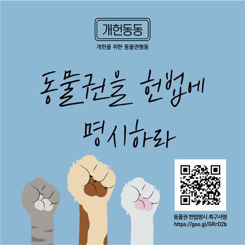 사진=카라 제공