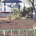 사진=A씨와 B씨가 죽은 개를 토막낸 인천의 한 공터(온라인 커뮤니티)