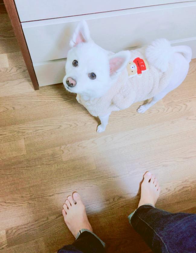 사진=방탄소년단 공식 SNS(이하)