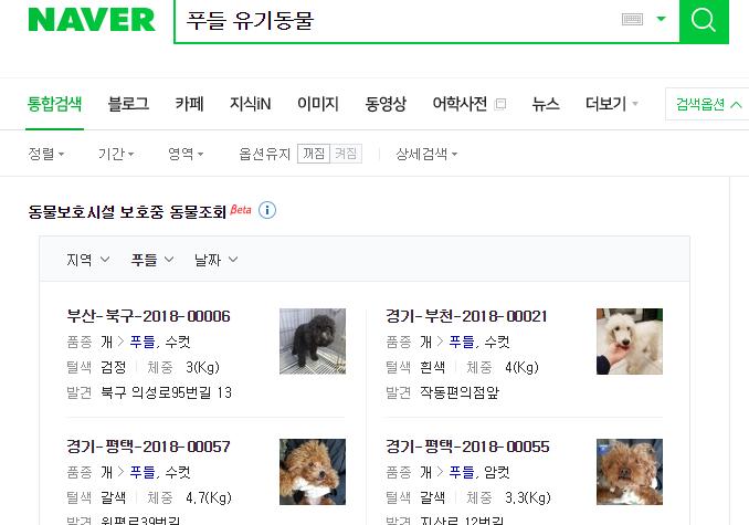 네이버, 검색으로 실종된 반려동물·유기동물 입양 정보 제공