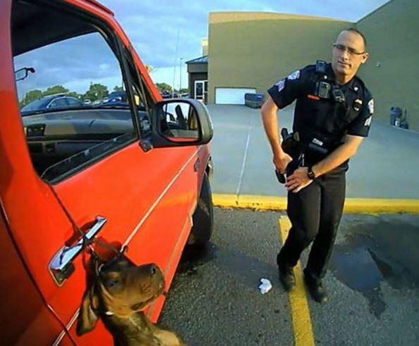 사진=2016년 7월 미국 캔자스 주 월마트 주차장에서 차량에 강아지 목을 매달고 달린 주인이 동물학대 혐의로 구속됐다.(페이스북 'Arkansas City Police Department')