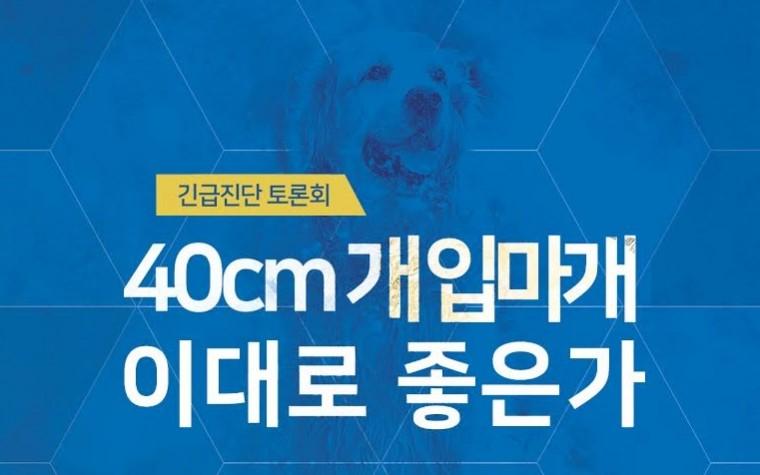 """""""체고 40cm 이상 개 입마개, 이대로 좋은가""""…국회서 긴급 토론회 개최"""