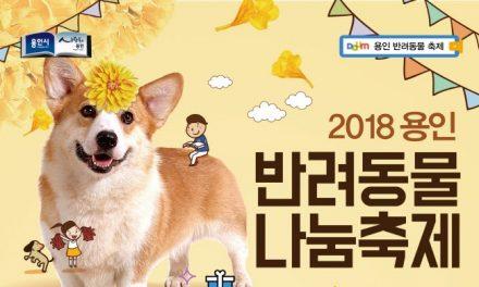 용인시, 31일 '반려동물 나눔축제' 개최