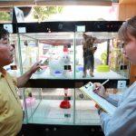송파구, 반려동물 판매업소 지도 점검 실시