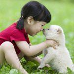 엄마, 나 다쳤어! 아이는 말하는데 말 못하는 반려동물은?