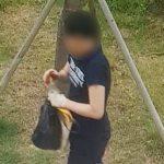 검찰, '경의선 숲길 고양이 학대' 30대 징역 1년 6개월 구형