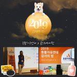 울지마마이펫,  2019 동물자유연대 감사의 밤 후원