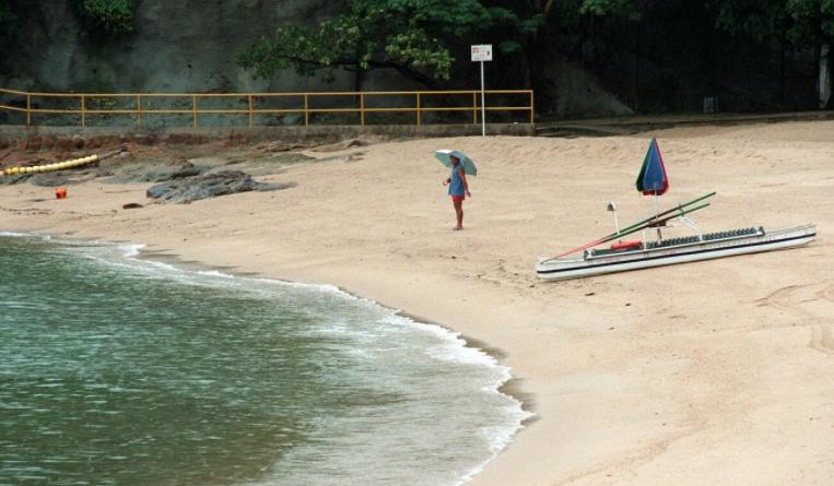 홍콩 해안가서 발견된 반려동물들 사체